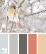 The Visual Marketing Revolution and the Great ColorScheme